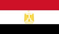 Ubuy Egypt logo