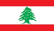 Ubuy Lebanon logo