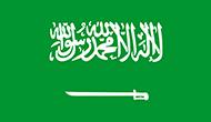 Ubuy Saudi logo